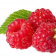 Royalty-Free Stock Photo: Raspberries; Objects on white background