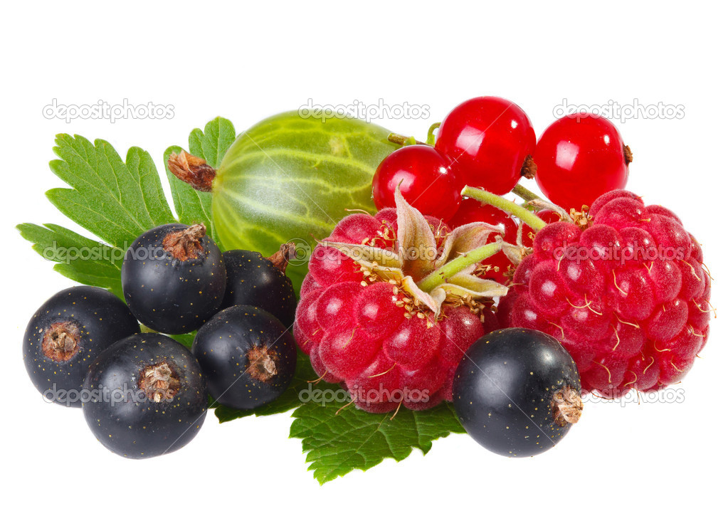 Fresh berries on a white background  Stock Photo #11391727