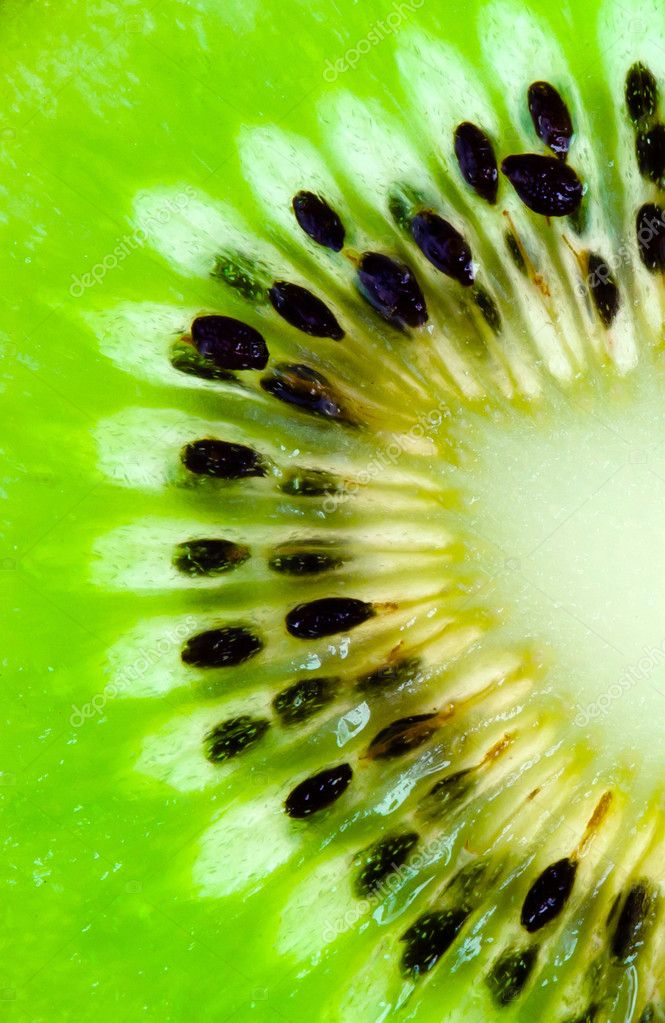 Abstract photo of a kiwi  Stock Photo #11391785