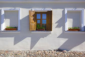 Window with flower on the white wall — Stock Photo