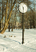 Clock in wonter park — Stock Photo