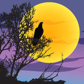 Night landscape with raven — Stock Vector