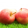 Red Apples on Grass — Stock Photo