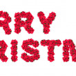 Merry Christmas Sign — Stock Photo #11644190