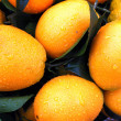 Royalty-Free Stock Photo: Fresh orange fruits