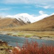 Landscape in the highland of Tibet — Stock Photo