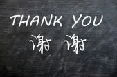 Thank you in English and Chinese — Stock Photo