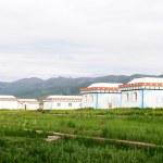 Постер, плакат: Mongolian tent on grassland