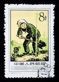 CHINA - CIRCA 1957: A Stamp printed in China shows image of a yo — Stock Photo