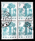 CHINA - CIRCA 1982: A stamp printed in China shows landscape in Xishuangbanna, circa 1982 — Stock fotografie