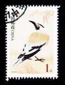 China - cerca de 2002: um selo imprimido na china mostra a imagem de um pássaro selvagem, circa 2002 — Fotografia Stock