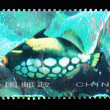 CHIN- CIRC1998: Stamp printed in Chinshows coral reef fish , circ1998 — Foto Stock #11738092
