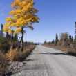 Stock Photo: Glenn Highway 3