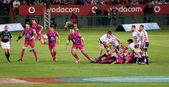 Defensa de los toros rugby sudáfrica 2012 — Foto de Stock