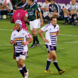 Постер, плакат: Rugby Gio Aplon and Dewaldt Duvenage Stormers South Africa 2012