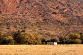 Abandoned Shack Against Majestic Mountain — Stock Photo