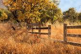 Viejo cerca de la granja de madera — Foto de Stock