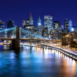 New York City — Stock Photo #11418965