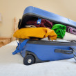 Luggage — Stock Photo #11419262