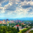 Asheville Skyline — Stock Photo #11476300