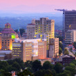 Asheville Skyline — Stock Photo #11476306