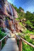 Hickory nut falls — Stok fotoğraf
