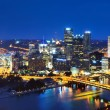 Pittsburgh Skyline — Stock Photo #12207087