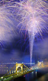 PIttsburgh Fireworks — Stock Photo