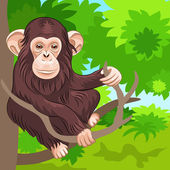 Vector of funny monkey chimp in the jungle — Stock Vector