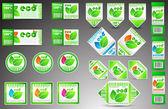 Color set vector eco tickets — Stock Vector