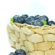 A basket of blueberries — Stock Photo