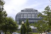 Jardín botánico nacional — Foto de Stock