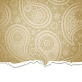 Torn paper with a paisley pattern. — Stock Vector
