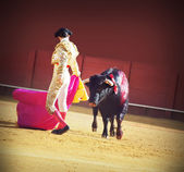 Torero with bull in the bullfighting arena in Spain — Stock Photo