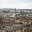 Seville Cathedral view from above, Andalusia,  Spain — Stock Photo