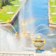 Famous Samson and the Lion fountain in Peterhof Grand Cascade, S — Stock Photo #11669089