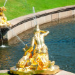 Fountain in Petrodvorets (Peterhof), St Petersburg, Russia — Stock Photo