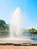 De fontein in de lagere park van peterhof, rusland — Stockfoto