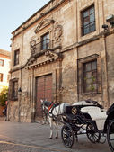 Horse and carriage for sightseeing in Cordova, Spain — Stock Photo