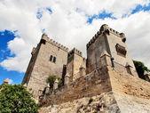 Castle of Almodovar del Rio, Cordoba, Spain — Stock Photo