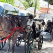 Horse carriage in Jeres de lFrontertown, Andalusia. Spain. — Stock Photo #11815346