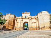 Gate in castle, Carmona, Andalusia, Spain — Stock Photo