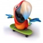 papağan — Stok fotoğraf #10996882