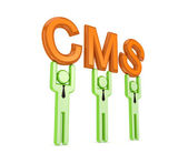 3d small with a word CMS in a hands. — Stock Photo