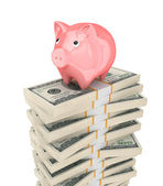 Pink piggy bank and dollar packs. — Stock Photo