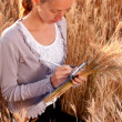 Young woman agronomist or a student analyzing wheat ears — Stock Photo #11526636