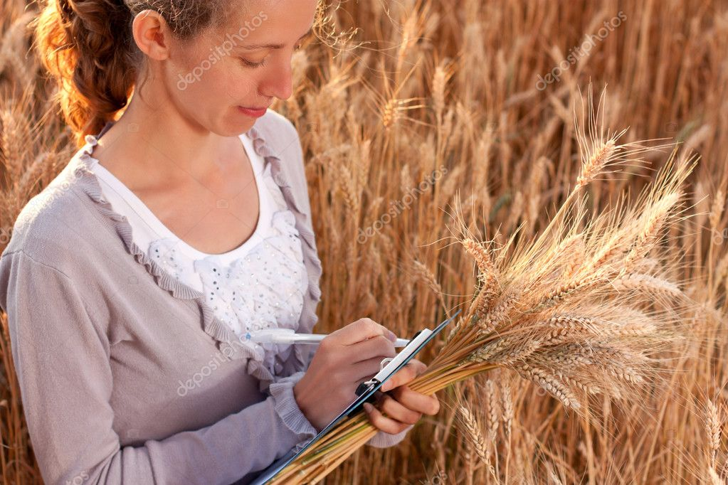 Young woman agronomist or a student with document in hand writes results of her experiment in the wheat field — Stock Photo #11526659