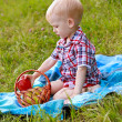 Child having picnic on green meadow — Stock Photo #11954773