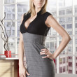 Blonde business woman with hand on the hip - Stock Photo