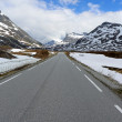 NorwegiHighway — Stock Photo #11779723